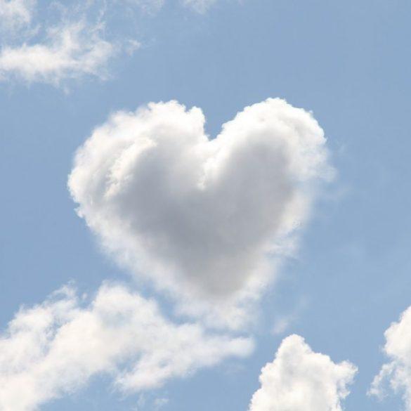 , ♥Die Lichtbrüder zum Tag der Liebe♥, Pansliste, Pansliste