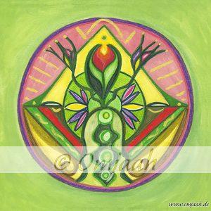 , Die heilende Kraft der Gillymaa Mandalas (Video), Pansliste