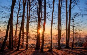 , Imbolc – der Sieg des Lichts über die Dunkelheit (2.Februar)